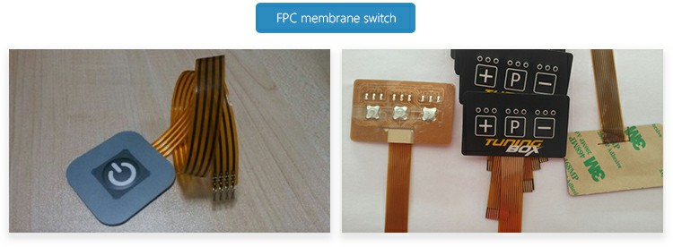 FPC membrane switch